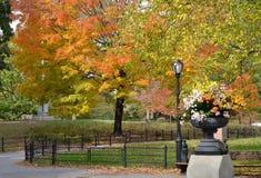 NYC i hösten Royaltyfria Bilder