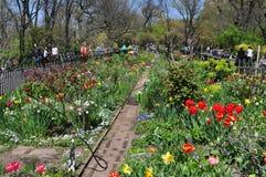NYC: Il giardino della gente nel parco della riva del fiume Fotografie Stock
