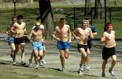 NYC: Joggers in Central Park Royalty Free Stock Photography