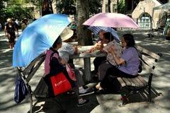 NYC: Kinesiska kvinnor som leker kort Arkivbild