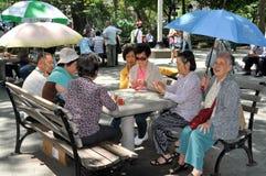 NYC: Kinesiska kvinnor som leker kort Fotografering för Bildbyråer