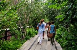 NYC: La gente che cammina all'alta linea parco Immagini Stock Libere da Diritti
