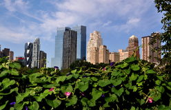 NYC: Luxury Apartment Towers Stock Photography