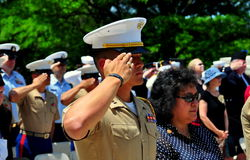 NYC:  Marine Saluting at Memorial Day Ceremony. NYC - May 26, 2014:  United States Marine saluting during the annual Memorial Day Remembrance ceremonies in Stock Images