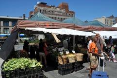 NYC: Markt des Harlem-Landwirts Stockfotografie