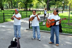 NYC: Musici in Central Park royalty-vrije stock fotografie