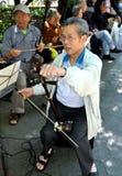 NYC: Musiker in Chinatown Stockbilder