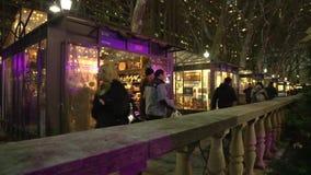 NYC-Park nachts (2 von 5) stock footage