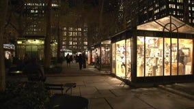 NYC-Park nachts (4 von 5) stock video
