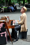 NYC: Piano Player on Central Park's Mall Royalty Free Stock Image
