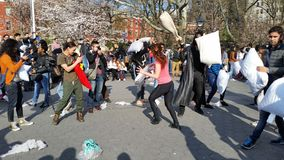 The 2016 NYC Pillow Fight Day Part 4 11 Stock Image