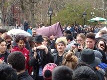 2016 NYC poduszki walki dzień 49 Fotografia Stock