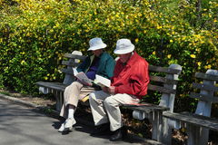 NYC: Seniors Reading Books in Park. Two senior citizens in matching hats sitting on a bench in NYC's Riverside Park reading books Stock Images
