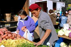 NYC: Shoppers at Farmer's Market. New York City:  People shopping for farm fresh produce at the West 77th Street farmer's market Royalty Free Stock Photos