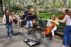 NYC: Student Musicians i Central Park Royaltyfri Fotografi