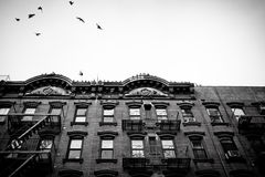 NYC Tenement Apartments. Historic Old Law New York City Tenement apartment houses Stock Photo