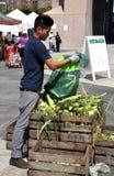 NYC: Trabajador en el mercado del granjero de Harlem Fotografía de archivo libre de regalías