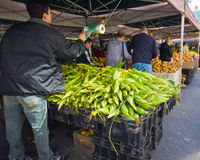 NYC Union Square Greenmarket Stock Image