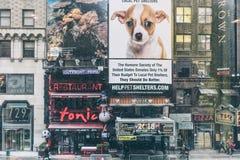 NYC/USA - 29 DEZ 2017 - известный бульвар Нью-Йорка квадратные времена стоковые изображения