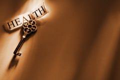 Nyckel- Royaltyfri Bild
