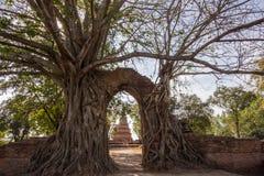 Nyckeln till passagen av tid på fördärvar av Wat Phra NgamWat Cha Ram, Phra Nakorn Si Ayutthaya, Thailand Arkivfoto