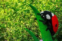 Nyckelpiga i lego i den Planckendael zoo Fotografering för Bildbyråer
