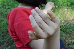Nyckelpiga på ett finger för flicka` s arkivfoto