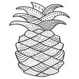 Nyckfull linje konst för ananas färgläggningbok för vuxna människan, antistress färgläggningsidor Royaltyfria Bilder