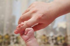 nyfödd hand Arkivbilder