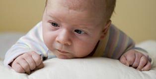nyfödd stående arkivfoto