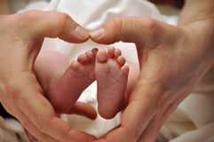 nyfödda farsafothänder Royaltyfria Foton