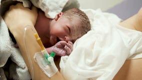 Nyfött behandla som ett barn att ligga på bröstet av modern stock video