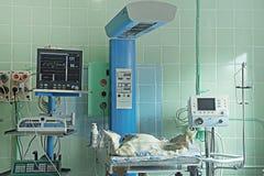 Nyfött behandla som ett barn att sova och utrustning i neonatal intensivvårdenhet Fotografering för Bildbyråer