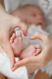 Nyfött behandla som ett barn att sova på moderns händer arkivfoto