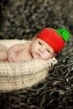 Nyfött behandla som ett barn att sova på päls i korgen i rolig hatt som bär eller tomaten Arkivfoto
