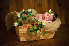 Nyfött behandla som ett barn flickan har söta drömmar i jordgubbar arkivbilder