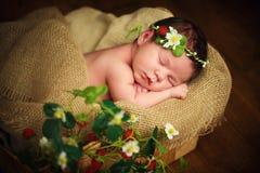 Nyfött behandla som ett barn flickan har söta drömmar i jordgubbar royaltyfri foto