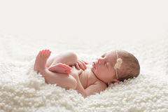 Nyfött behandla som ett barn flickan som krullas upp på henne tillbaka Royaltyfri Fotografi