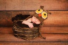 Nyfött behandla som ett barn flickaslitage en Owlhatt Royaltyfri Bild