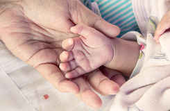 Nyfött behandla som ett barn handen på moderhanden Arkivbilder