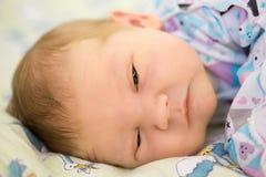 Nyfött behandla som ett barn i armarna av mamman, farsa Stora händer av modern, fathe Royaltyfri Bild