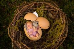 Nyfött behandla som ett barn i bird& x27; s-rede arkivbilder