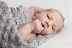 Nyfött behandla som ett barn i studio Royaltyfria Bilder