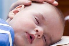 Nyfött sova royaltyfria bilder