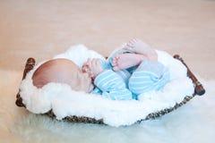 Nyfött sovande i korg Arkivfoton