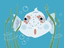 nyfiken fisk vektor illustrationer