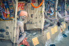 Nyfiken sikt i västra Bengal Arkivbilder