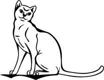 nyfiken vektor för katt Royaltyfri Bild