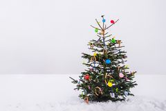 Nyfiket julträd för öppen luft i snön royaltyfri bild