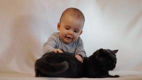 Nyfiket litet gladlynt barn som spelar med en katt arkivfilmer